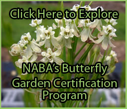 Click to Explore Garden Certification